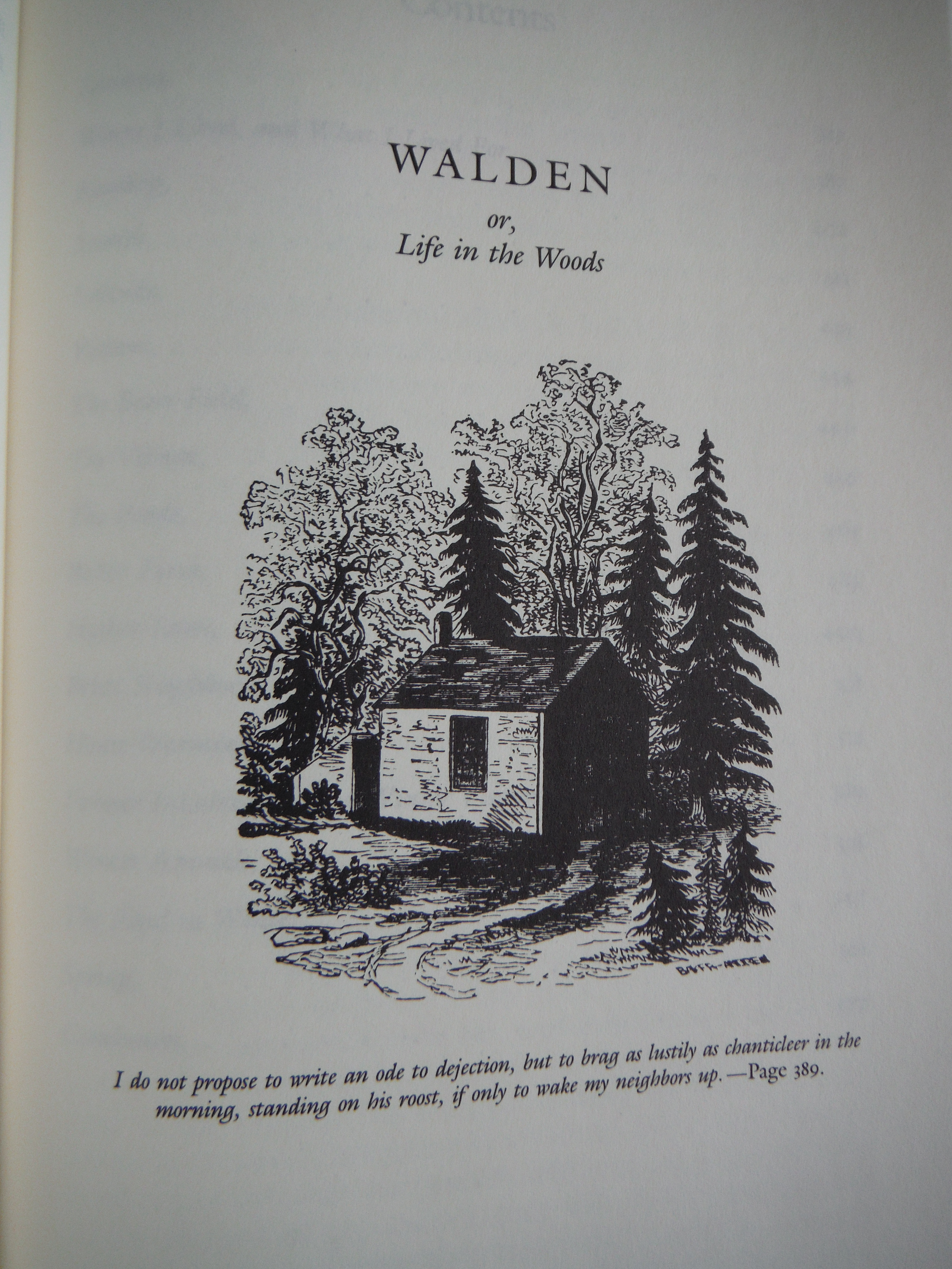essays on walden or life in the woods Walden study guide contains a biography of henry david thoreau, literature essays, a complete e-text, quiz questions, major themes, characters, and a.